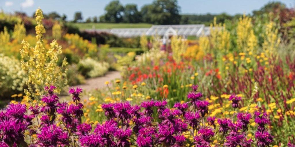 The beautiful Helmsley Walled Gardens